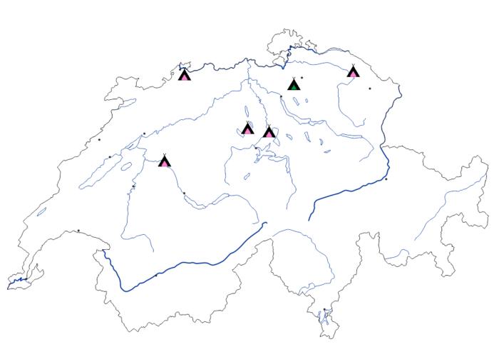 Reparatur Drop Off Schweiz für Zelte